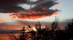 Sueños en nubes, Ana Fernández García