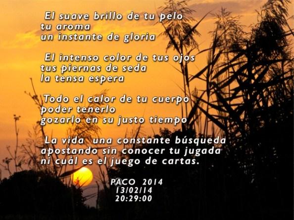 el-suave-brillo-de-tu-pelo, Paco Ballesteros
