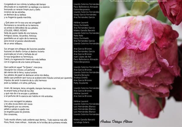 Los miércoles tampoco muerde, poema colectivo del 11 de junio 2014