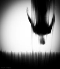 Inmersion,,Marcos Ferreiro,