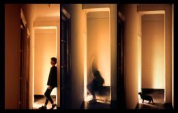 Metamorfosis gatuna ,Jaime Domenech