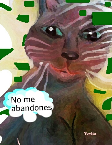 Yoyita, no me abandones
