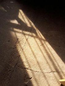 No seré tu luz,Alejandro Gustavo Paredes