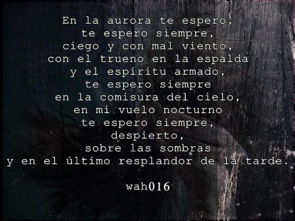 Te espero, Orlando Valle